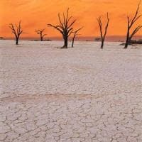 Clima, il 25% della Terra rischia di diventare deserto