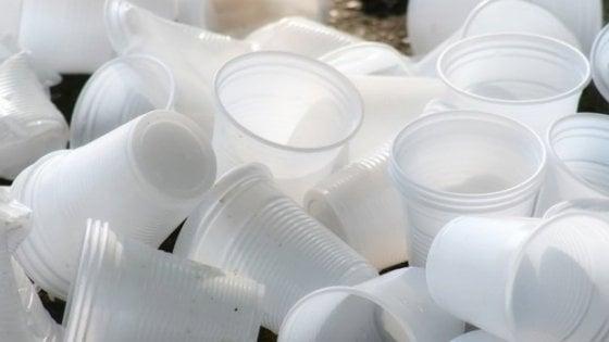 Nuova offensiva dell'Unione europea contro le plastiche inquinanti