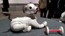 Alla ricerca dell'effetto 'wow': dalla tv che si srotola al cane robot