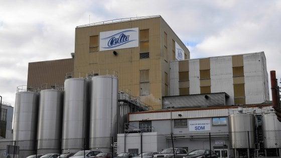 Latte in polvere Lactalis contaminato da salmonella: richiamate 12 milioni di scatole