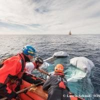 Migranti, gommone vuoto alla deriva nel Mediterraneo: si cercano naufraghi