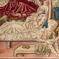 Peste nera, scagionati i topi. L'epidemia del 1347 fu trasmessa dagli uomini
