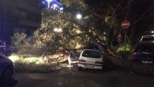 L'Italia battuta dal vento, raffiche fino a 200 km/h. Una vittima in CalabriaLe previsioni del tempo