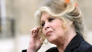 "Brigitte Bardot contro #MeToo: ""Movimento ipocrita e ridicolo"""