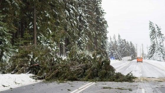La tempesta Friederike si abbatte sul Nord Europa: nove morti tra Olanda, Belgio e Germania. Trasporti nel caos