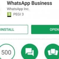 WhatsApp adesso si fa business