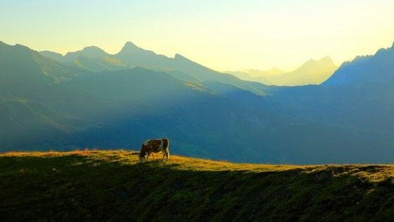 Sostenibilità, le pagelle green: Svizzera al top, Italia 16esima