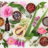 Attenti alle erbe: anche le più innocue possono interferire con i farmaci