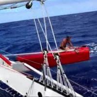 Soldini, collisione in oceano: