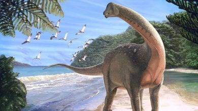 L'ultimo dei dinosauri: ecco  il gigante trovato nel Sahara