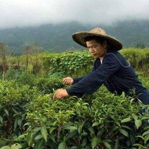 Cambogia, un ufficiale dell'esercito espropria la terra ai contadini: l'intervento dell'Onu