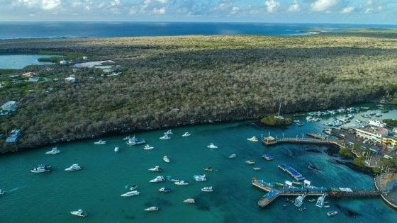 Galapagos, a rischio il numero chiuso: l'Ecuador chiama il turismo di massa