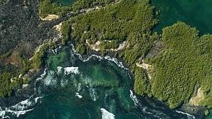 Galapagos, rischio folle -   foto
