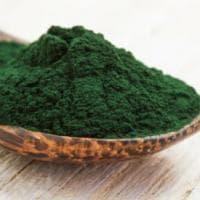Dalla preistoria all'alta cucina: l'alga spirulina che parla italiano (anzi, casertano)