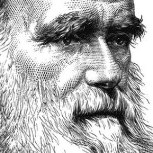 Darwin Day, nel mondo si celebra il papà dell'evoluzione