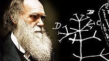 Darwin Day, nel mondo si celebra il papà dell
