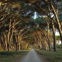 Dal Po alla Sila, l'Italia biosfera Unesco