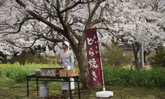 """'Le ricette della Signora Tokue' di Durian Sukegawa: """"La gratitudine è il senso di tutto"""""""