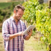 Agricoltura, il rapporto Cia: crescono le aziende giovani, ma si rimane sotto media Ue