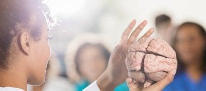 Alzheimer, l'abuso di alcol  è un fattore di rischio