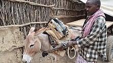 Somalia, gli aiuti  alle comunità Bantu  di contadini isolati  e discriminati