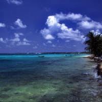 Buone notizia dalla Polinesia: