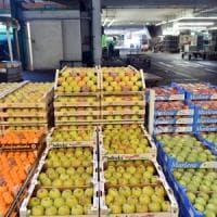 Istat, a gennaio inflazione allo 0,9%