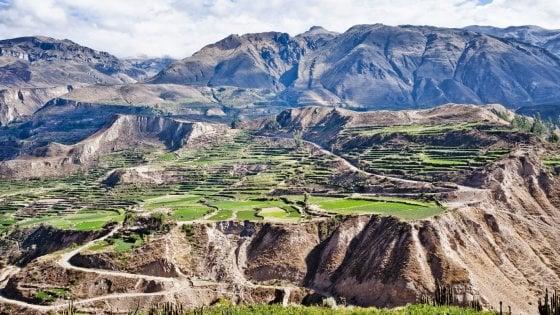 Tra super food, ricette antiche e cocktail iconici, vi portiamo alla scoperta del Perù