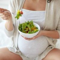 """""""Con la dieta vegana rischi di danni neurologici al feto"""""""