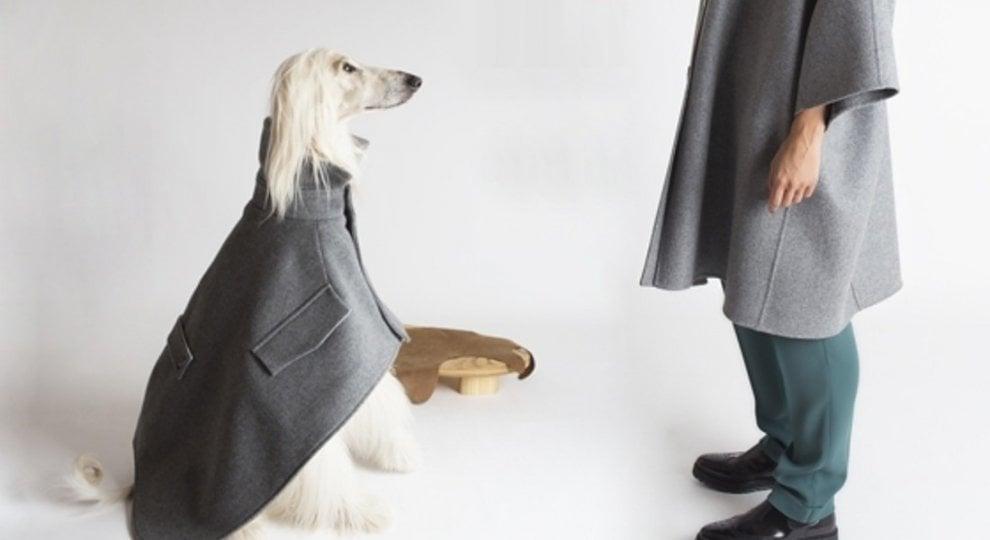 La carica dei 101, perché avere un cane fa trovare l'amore