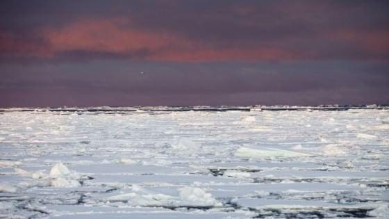 Al polo nord la primavera gioca d'anticipo