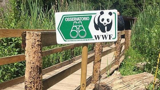 In viaggio per preservare la natura. Wwf Italia lancia la sezione Travel