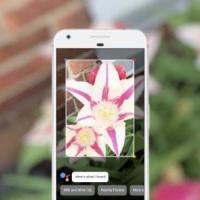 Google Lens arriva dentro Foto per tutti i dispositivi Android