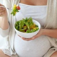 """Treviso, due neonati ricoverati con gravi deficit. I pediatri: """"Colpa della dieta vegana..."""