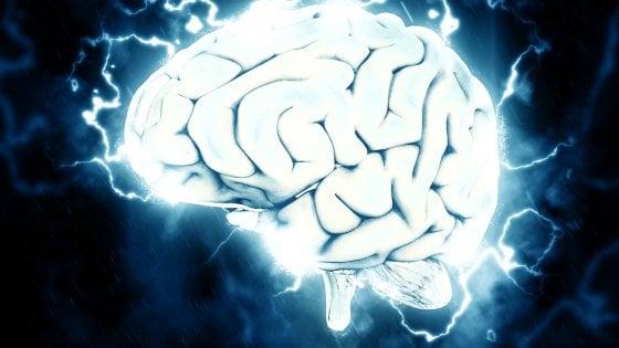Il cervello diventa 'adulto' a 13 anni, quando smettono di nascere nuovi neuroni