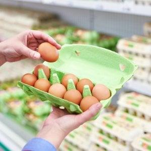 No Fipronil, no aviaria: censurata la pubblicità delle uova Ovito