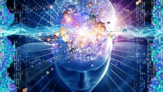 """Scoperto l'interruttore genetico che """"accende"""" la memoria"""