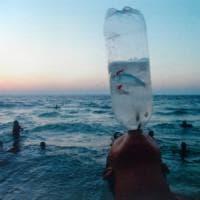 """""""Microplastiche nel 90% delle bottiglie d'acqua che beviamo"""". I marchi: ''Falsi positivi''"""