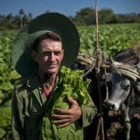 L'Onu taglia i ponti con i produttori del tabacco: stop ai finanziamenti