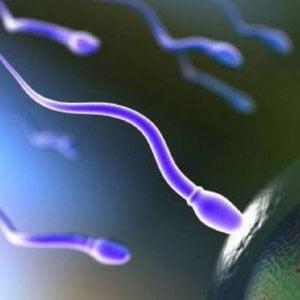 Con pochi spermatozoi a rischio la fertilità ma anche la salute maschile