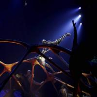 Usa, acrobata del Cirque du Soleil cade a terra e muore