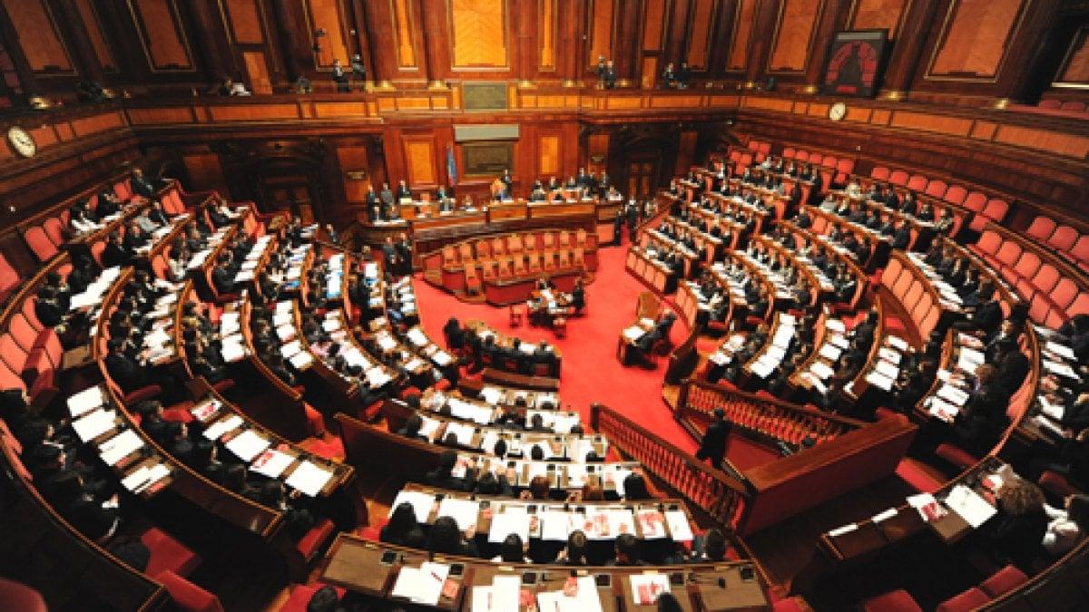 Nuovo parlamento l 39 identikit di deputati e senatori al for Numero di deputati e senatori