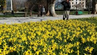 Ecco perché la primavera quest'anno arriva il 20 marzo (e sarà così per altri 80 anni)
