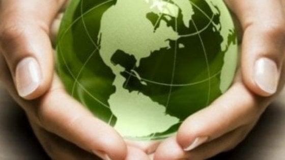 L'impegno green aiuta le aziende: crescono business e reputazione
