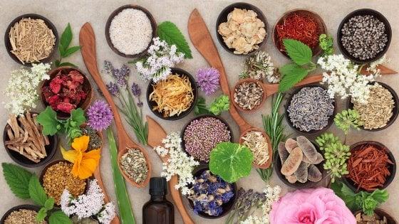 Aromaterapia, attenti agli oli essenziali: possono provocare problemi ai ragazzini prima della pubertà