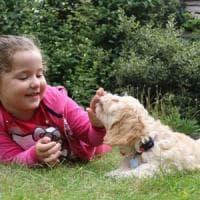 Quando sorridi il tuo cane sa che sei felice