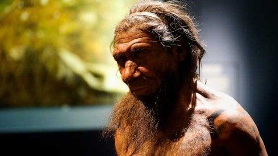 Spiegato il naso di Neanderthal: così i nostri antenati respiravano meglio e resistevano al freddo