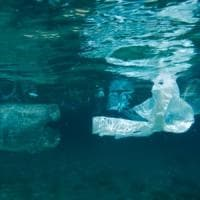 Far pagare i sacchetti di plastica funziona: nei mari inglesi diminuiti del 30%