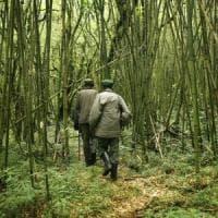 Repubblica Democratica del Congo: uccisi cinque ranger e una guida nel parco di Virunga