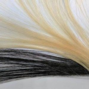 Lunga vita ai capelli grazie all'autocannibalismo delle cellule